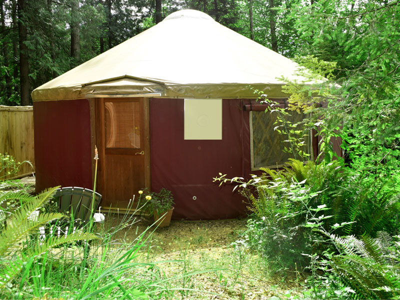 Saltspring Yurt Glamping at its Best