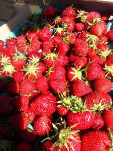 saltspring strawberries